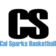 Ballin in the Ballroom (2021) Logo
